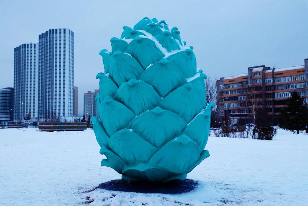 В Красноярске появились разноцветные кедровые шишки