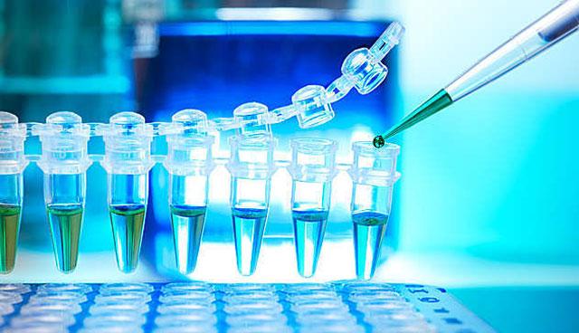 В Красноярске создают препарат для диагностики рака