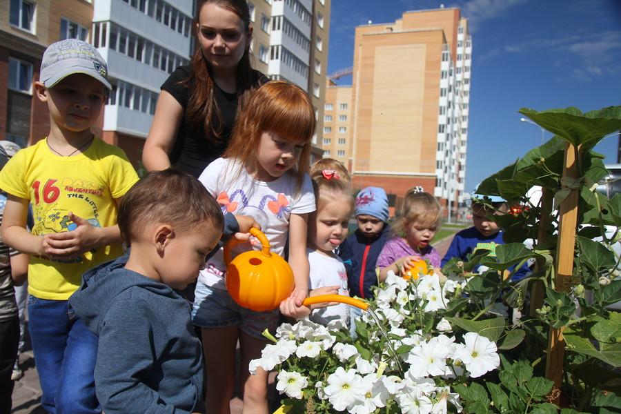 В Красноярске малыши от двух до четырёх лет вырастили овощи на огороде рядом с домом