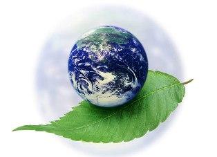 В Красноярске прочтут серию лекций об экологии