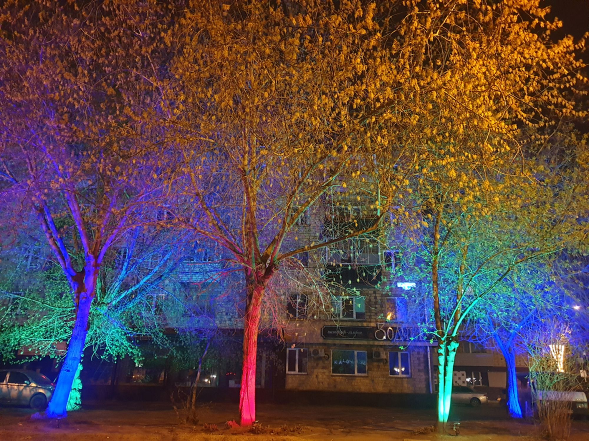 В Железнодорожном районе Красноярска засветились  деревья