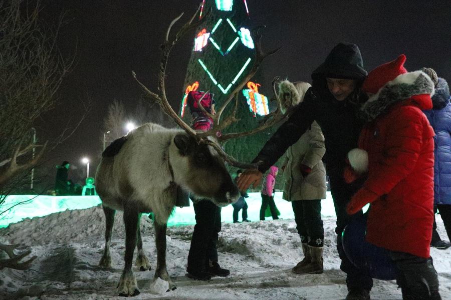 В новогоднюю ночь в Татышев-парке для красноярцев пройдёт большая праздничная программа