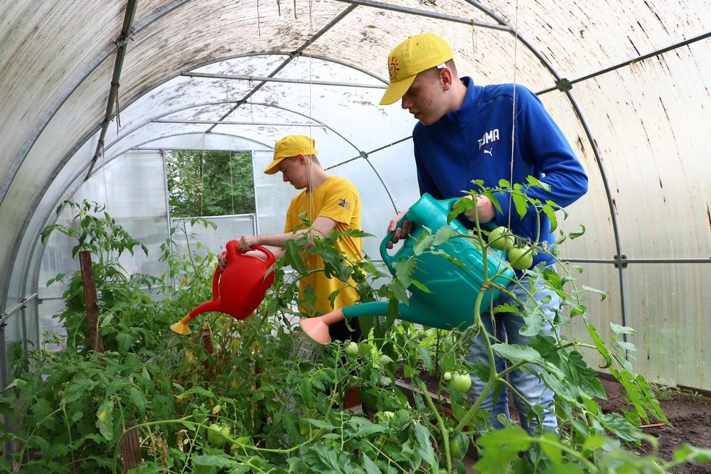 «Особенные» бойцы трудового отряда главы города собрали урожай