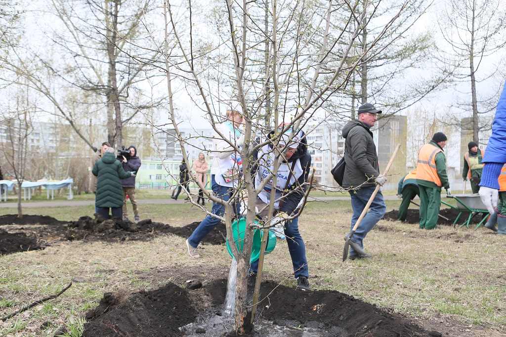 Первыми «чемпионами чистоты» в Красноярске стали «Сани-Тары»