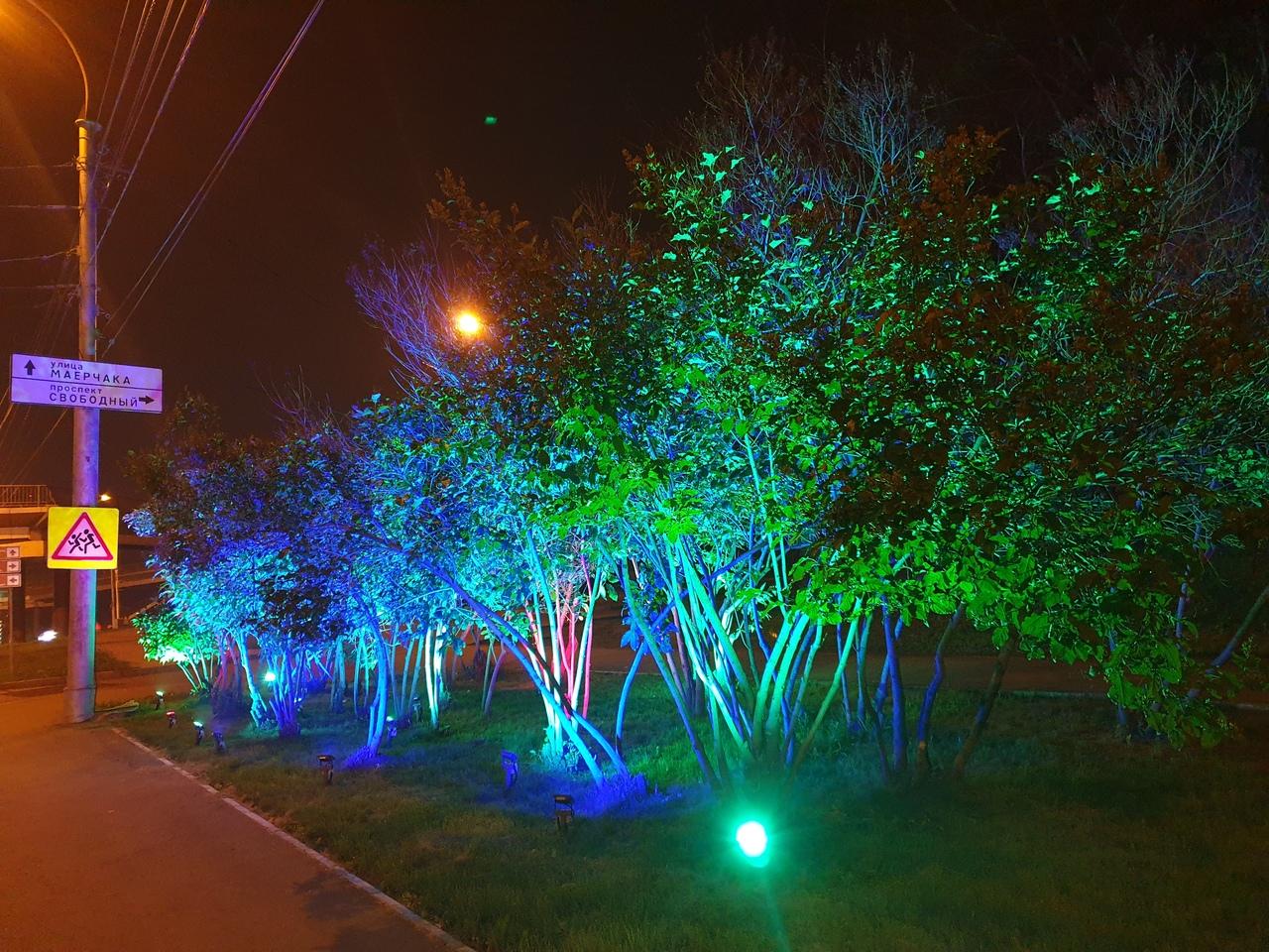 В Красноярске на улице Маерчака подсветили ещё несколько деревьев