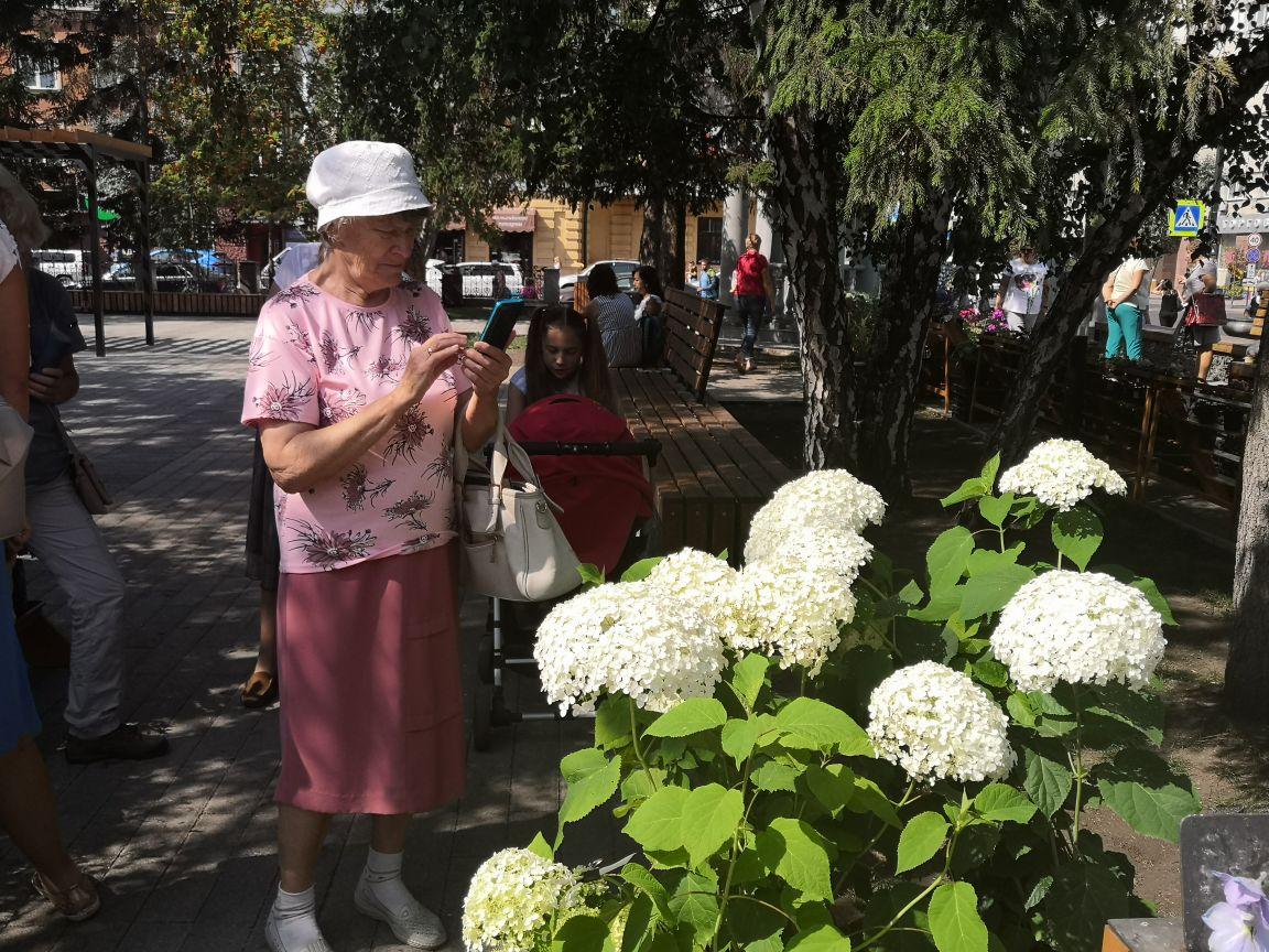 В красноярском сквере Пушкина проходит карнавал цветов