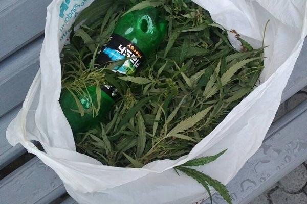 В Красноярске в колонию пытались перебросить пакет конопли