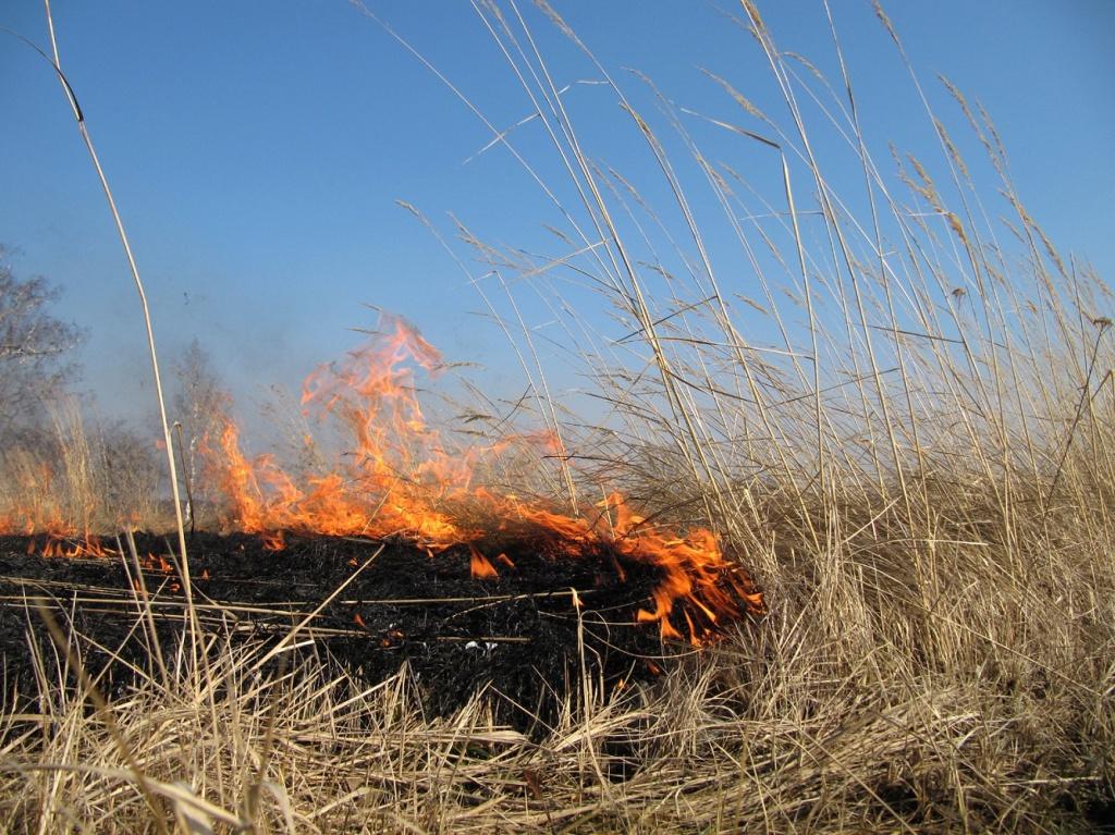 Пожар на Торгашинском хребте полностью потушен