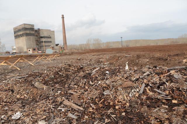 Краевой суд обязал лесопильное предприятие Канска очистить территорию от опилок
