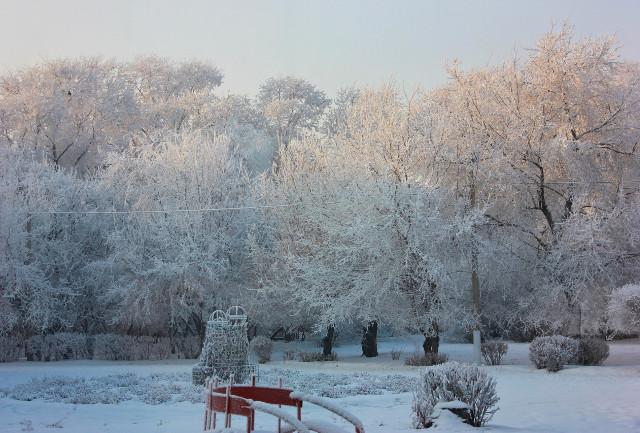 Жителей Красноярского края предупреждают о метелях и сорокаградусных морозах