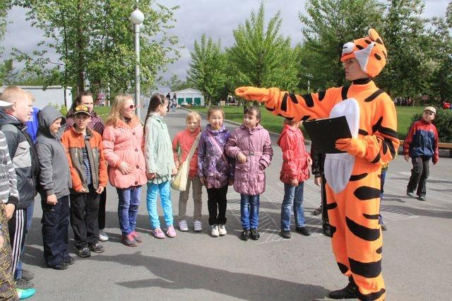 В Красноярске летом появится 53 бесплатных кружка для детей